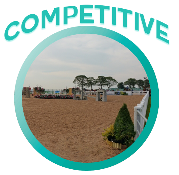 geotextile-horse-manege-competition